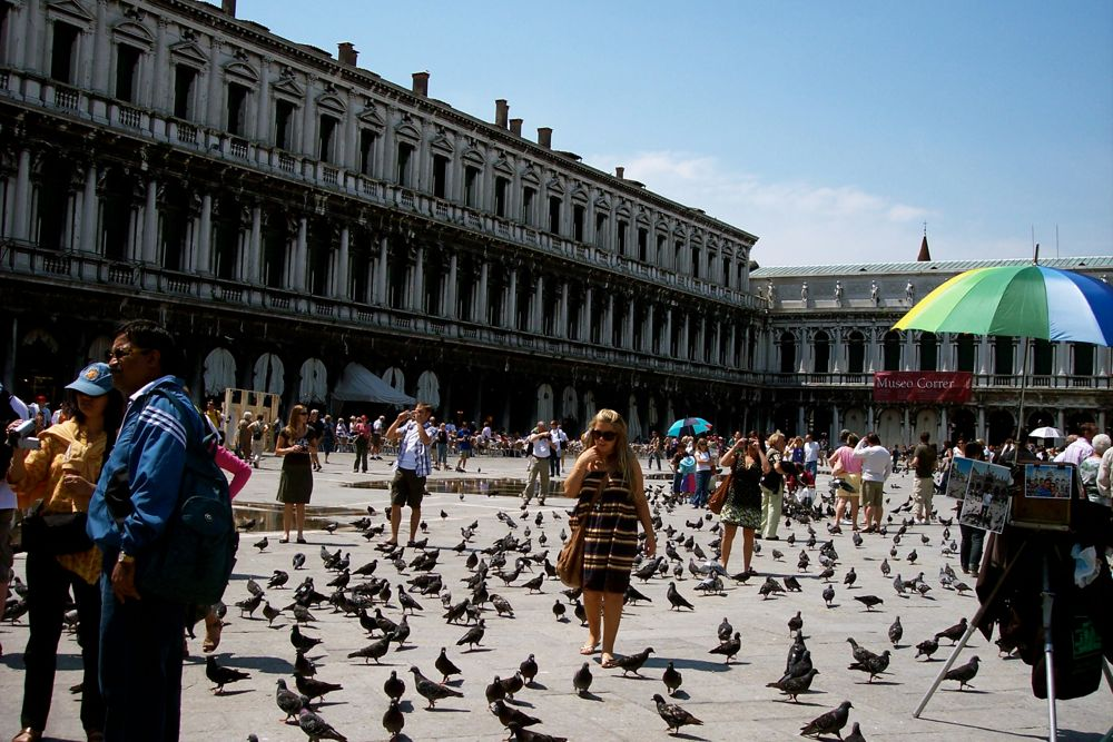 The St. Mark's Square
